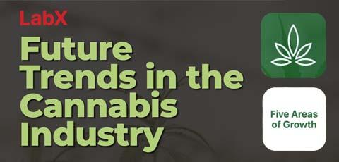 LabX.com Cannabis Infographic Image