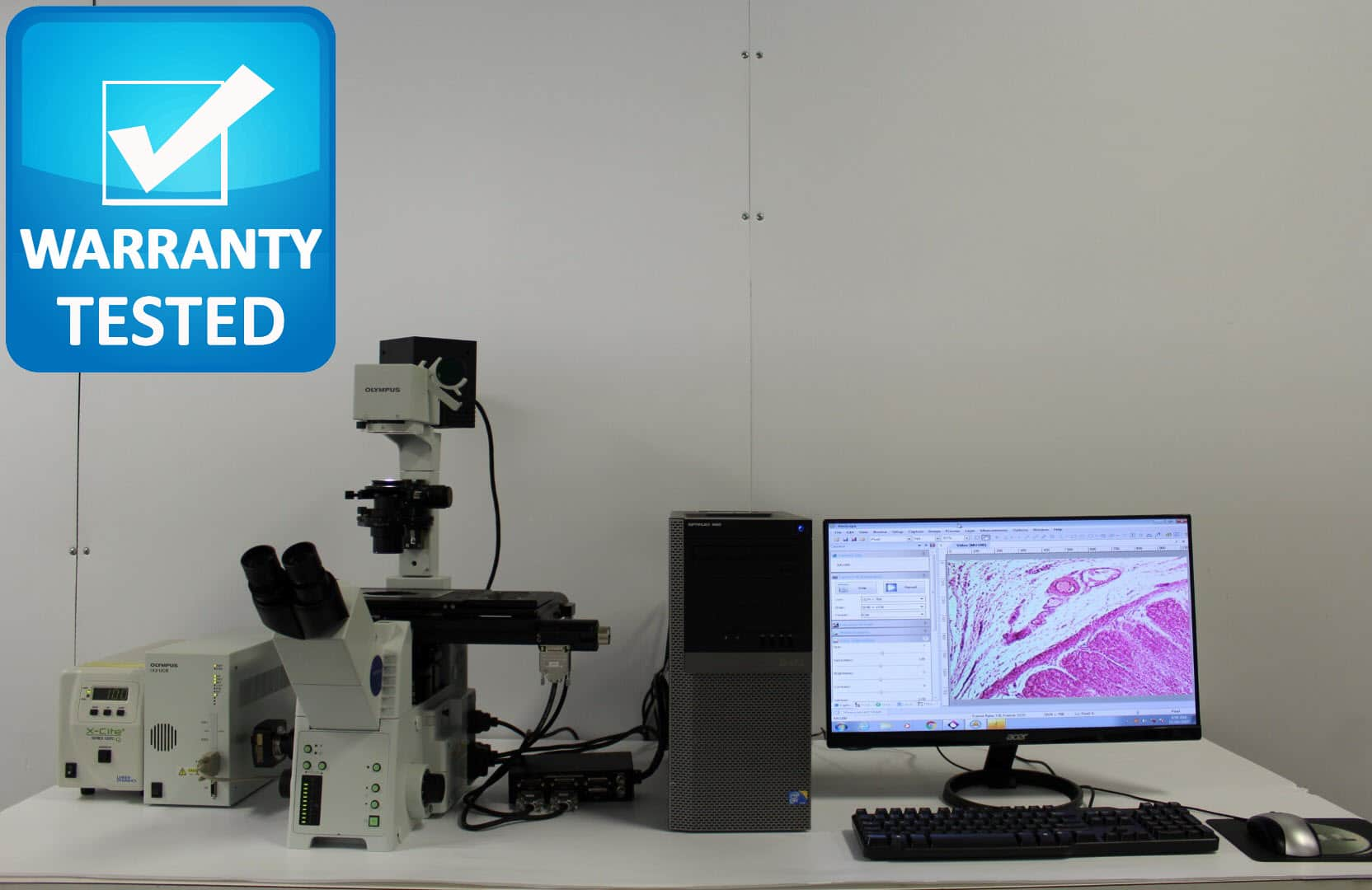 Olympus IX81 Inverted Motorized Fluorescence Motorized Microscope