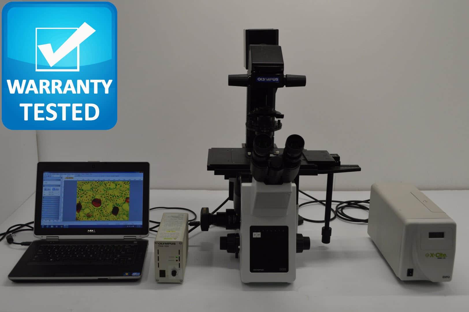 Olympus IX53 Inverted Fluorescence Microscope