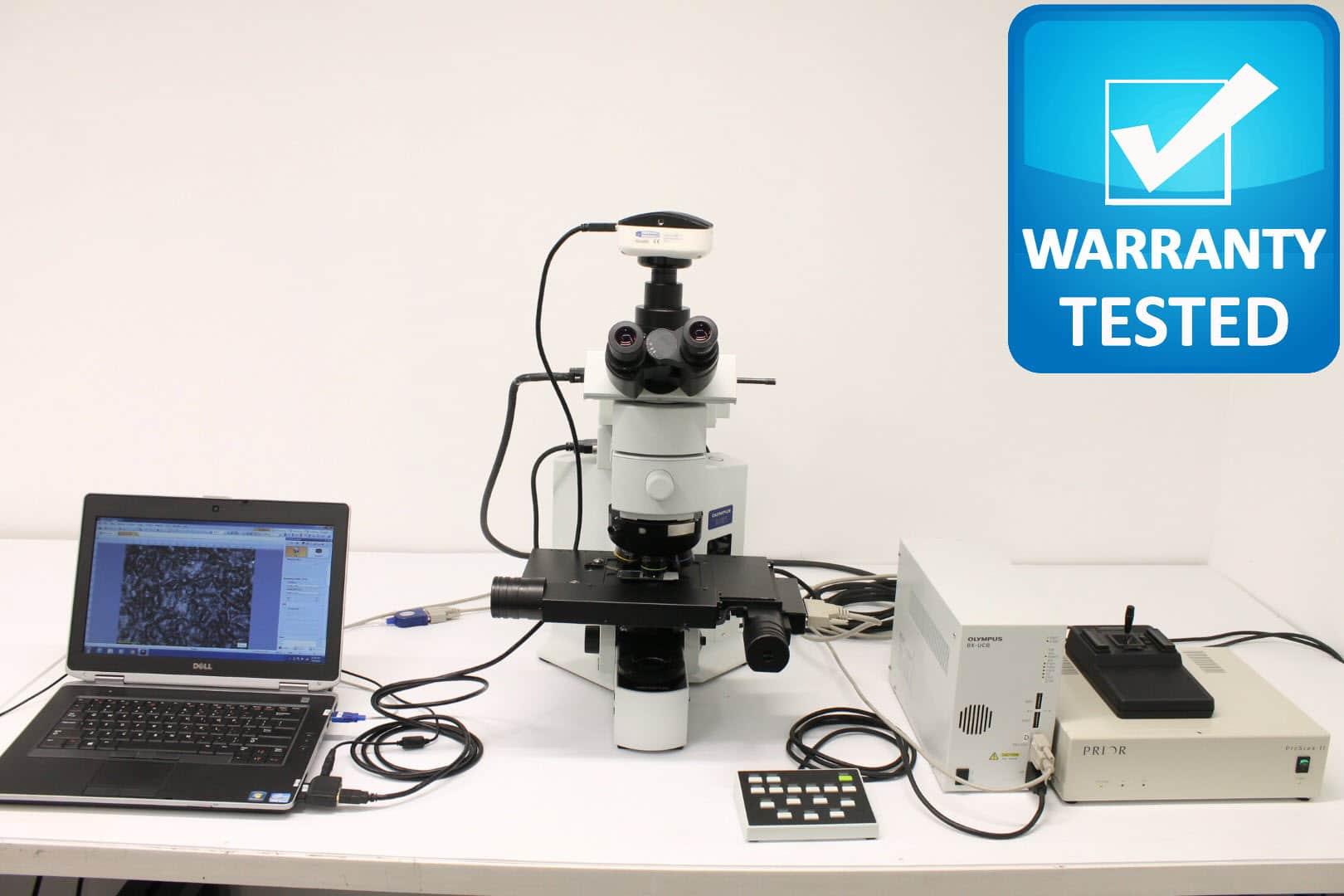 Olympus BX61 Microscope with Motorized Autofocus Reflective