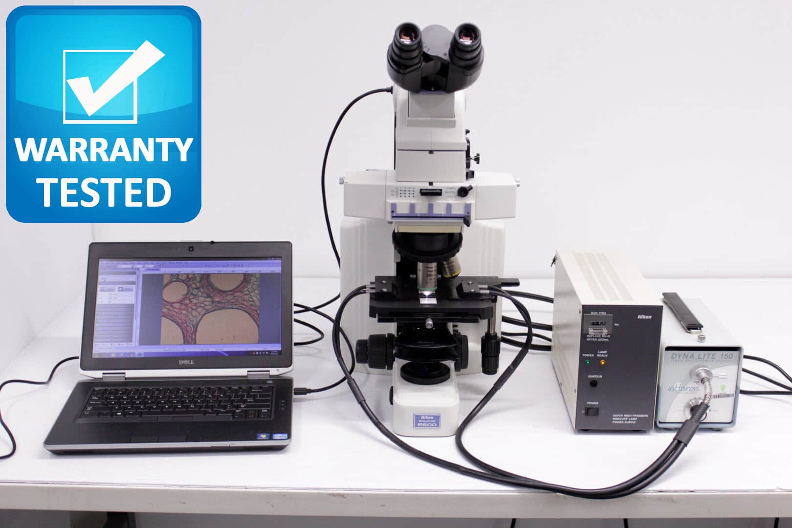 Nikon E600 Microscope with Fluorescence E600W