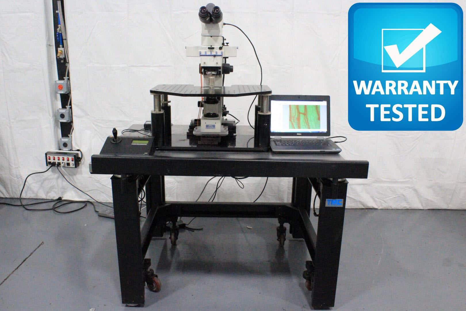 Nikon E600 FN Fluorescence Microscope E600FN w/ Anti-Vibration Table