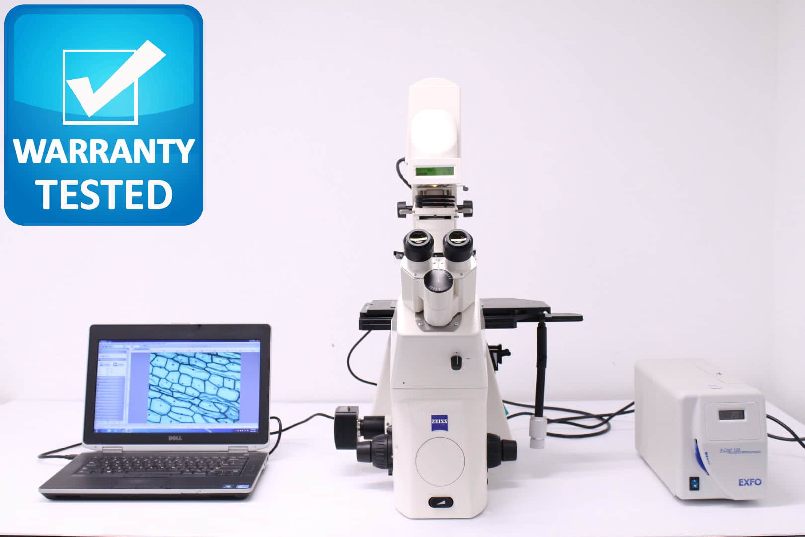 Zeiss Axiovert 200 Fluorescence and Phase Contrast Microscope