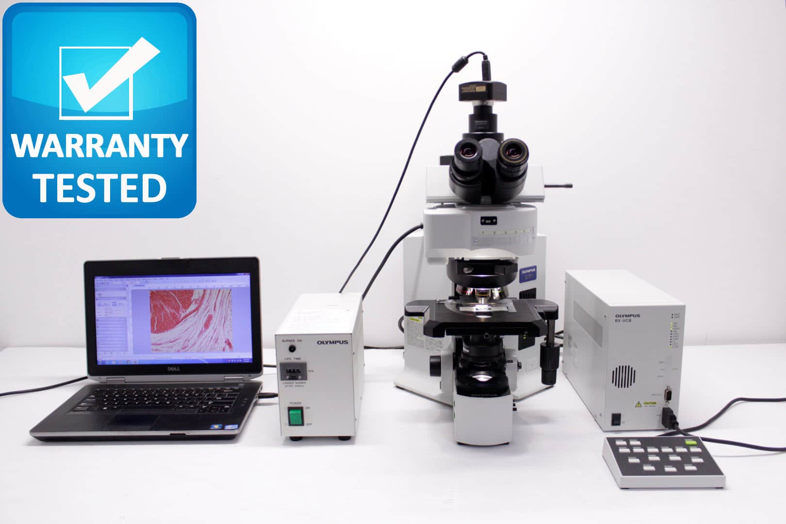 Olympus BX61 Fluorescence Microscope BX61TRF