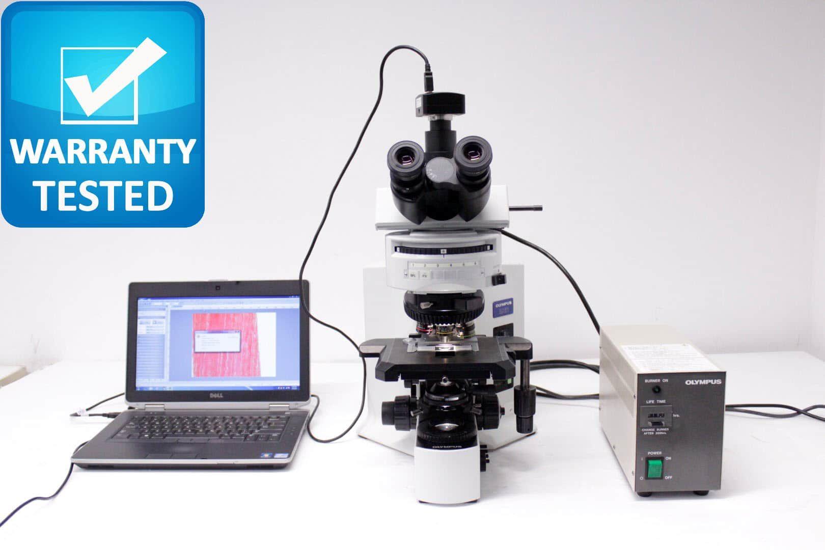 Olympus BX51 Fluorescence Microscope BX51TF