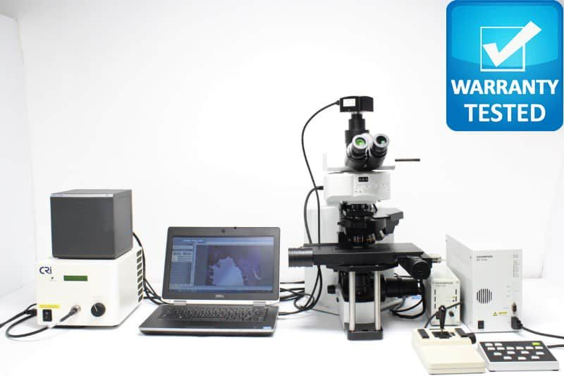 Olympus BX51WIF Fluorescence Upright Microscope