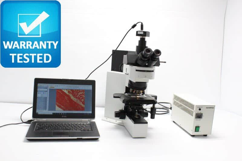 Olympus BX50 Brightfield Fluorescence Microscope BX50F4