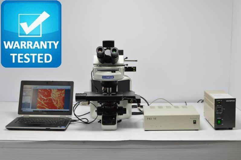 Olympus BX53 Fluorescence Motorized Microscope BX53F