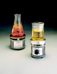 Thermo Scientific Micro Hotplate