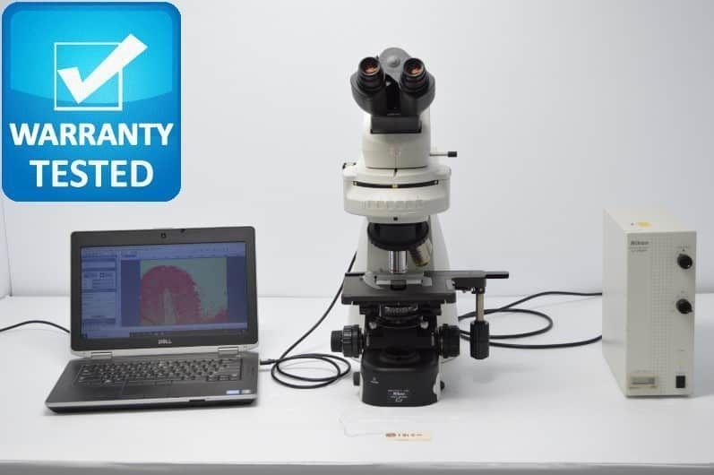 Nikon Ci-L Fluorescence Microscope