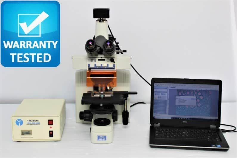 Nikon E600 Fluorescence Phase Contrast Microscope E600W Pred Ni NI-C, NI-U
