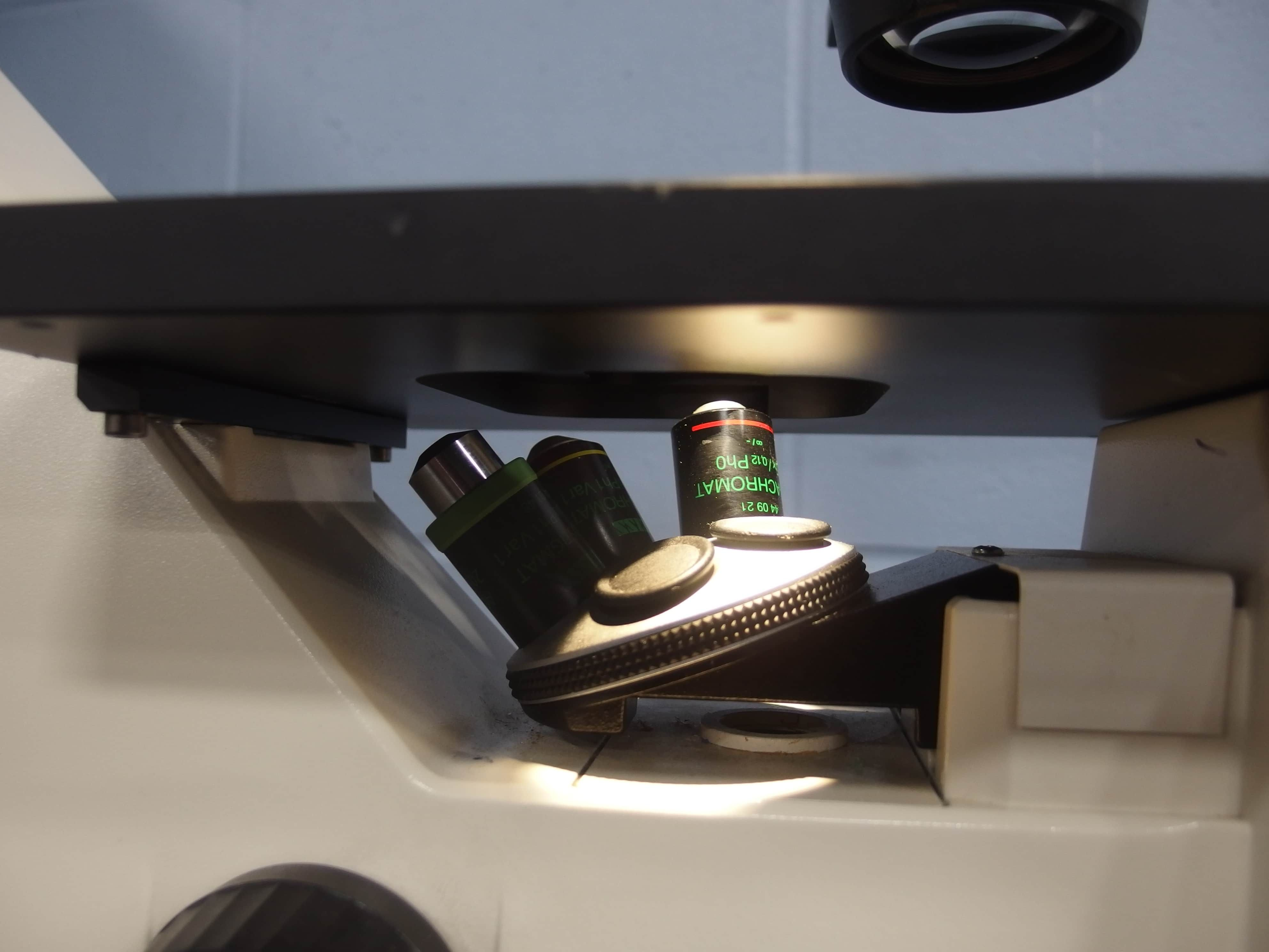 Zeiss Inc. Axiovert 25 Inverted Microscope