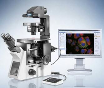 Olympus IX73 Inverted Microscope