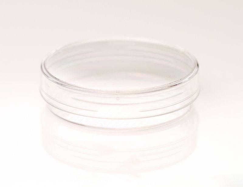 Corning® 60 mm Gridded Scoring Dish
