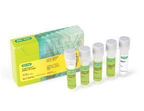 CytoTrack Green 511/525 #1351203