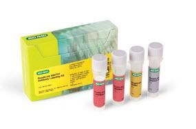 ReadiLink 680/701 Antibody Labeling Kit #1351007