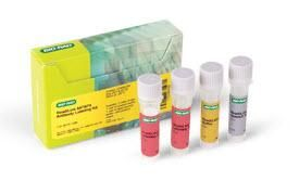 ReadiLink 647/674 Antibody Labeling Kit #1351006