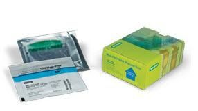 415% Mini-PROTEAN TGX Stain-Free Protein Gels, 15 well, 15 l