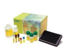 Bio-Plex Pro Human Chemokine Panel, 40-Plex #171AK99MR2