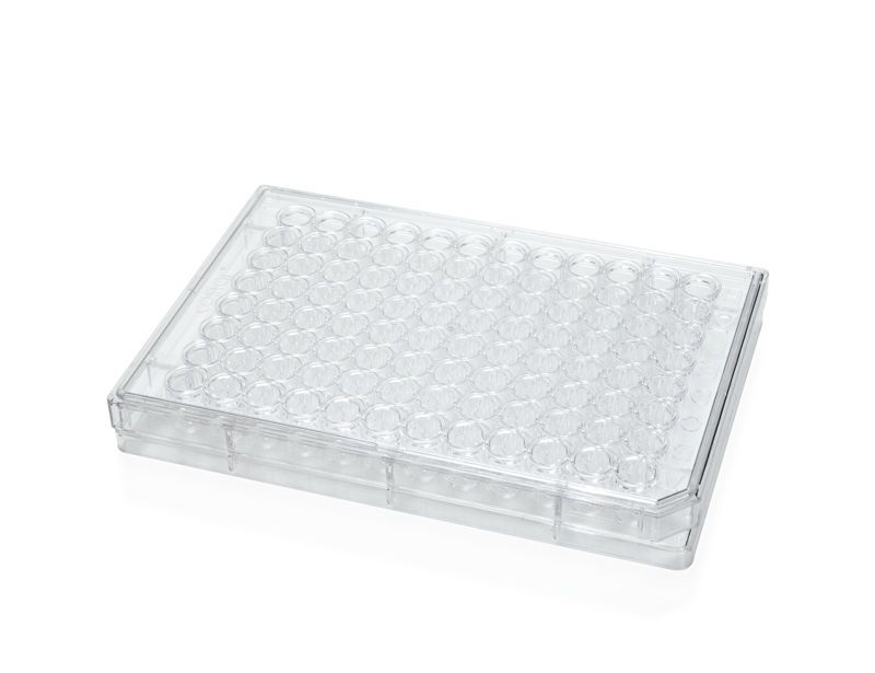 Corning® 96-Well Round-Bottom Microplate