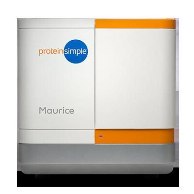 R&D Systems: ProteinSimple Maurice