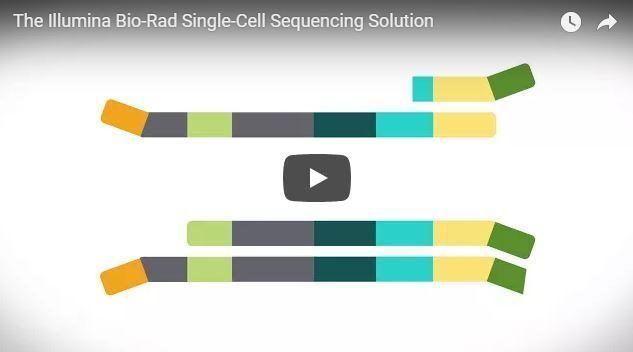 The Illumina Bio-Rad Single-Cell Sequencing Solution