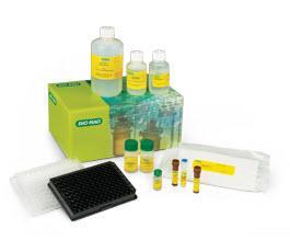 Bio-Plex Pro Human Diabetes 10-Plex Assay #171A7001M