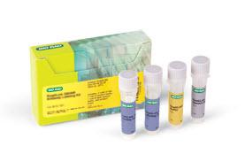 ReadiLink 405/454 Antibody Labeling Kit #1351011