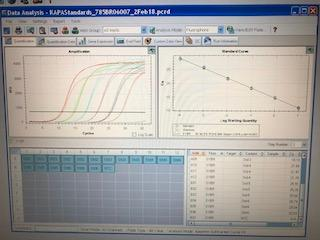 Bio-Rad CFX96 Real Time PCR System-YEAR 2011-New PM Service