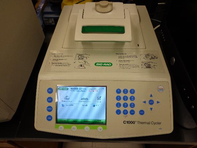 BIO-RAD C1000 96 well PCR Thermal cycler-Year 2009
