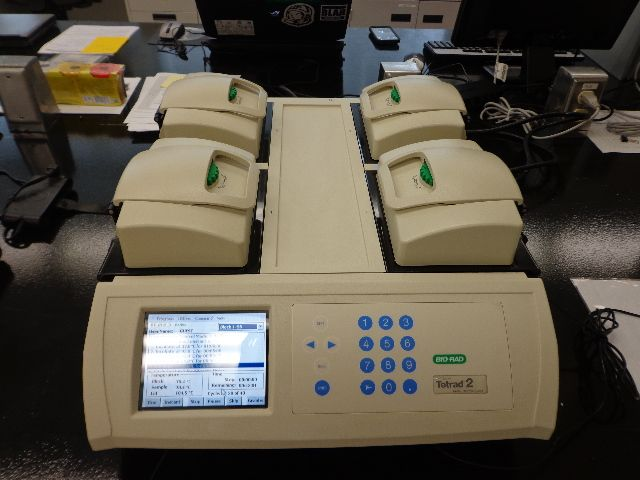 BIO-RAD TETRAD-2 GRADIENT PCR THERMAL CYCLER- Year 2011