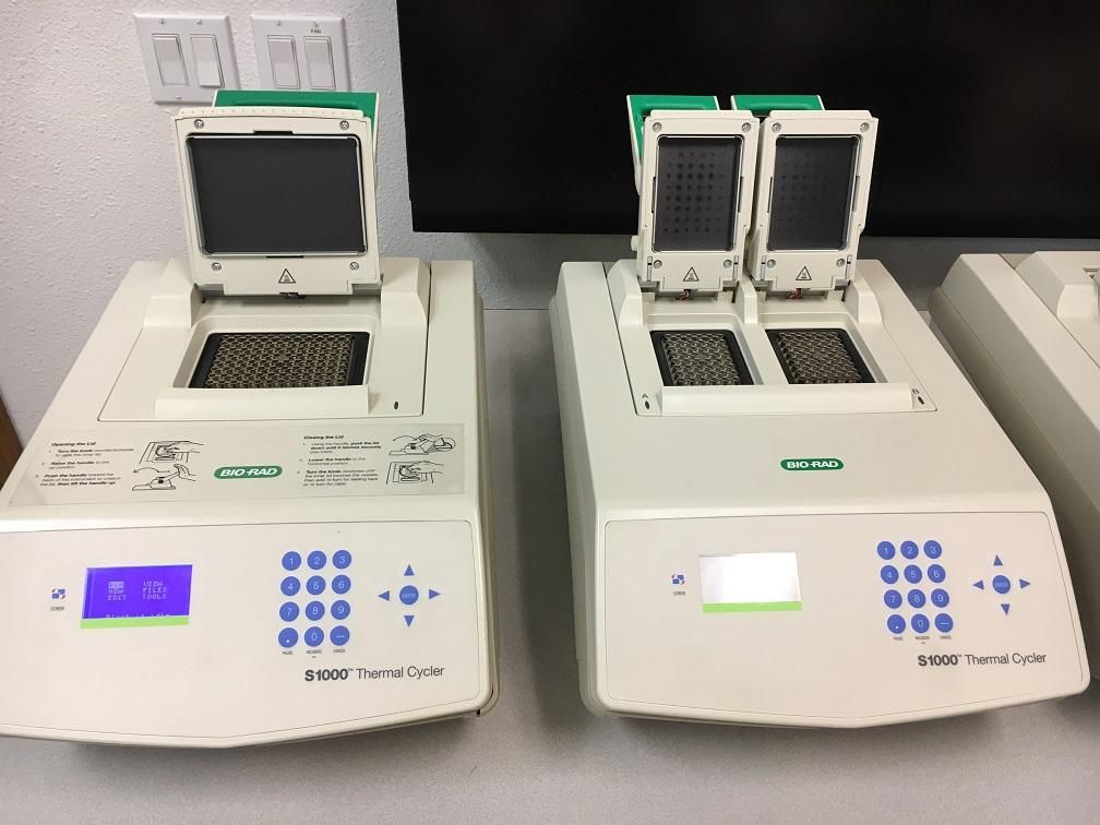 Bio-Rad S-1000 PCR - Certified and Warranty