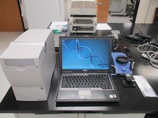Agilent 2100 G2938C Bioanalyzer Year 2008-NGx amplicon analysis