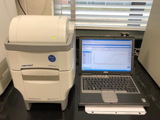 Eppendorf RealPlex4 96 well 4 Color Real-time PCR system-Year 2010