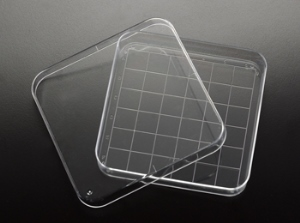 Sterile Square Petri Dishes with Grid 100 X 100mm (500/cs)
