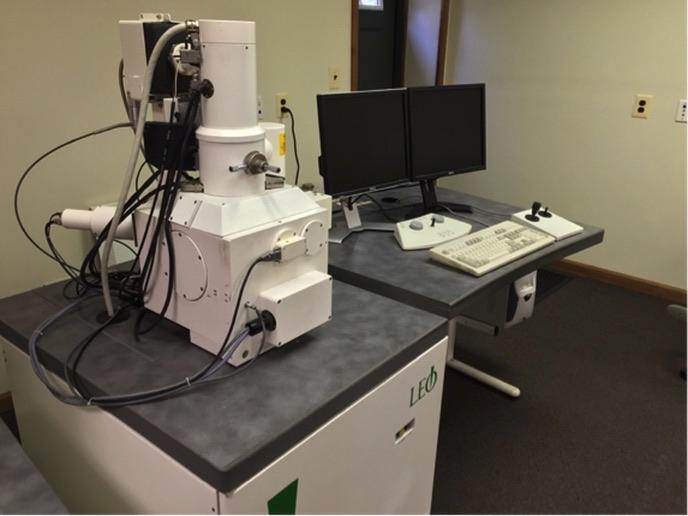 Zeiss (LEO) 1450VP Scanning Electron Microscope (SEM)