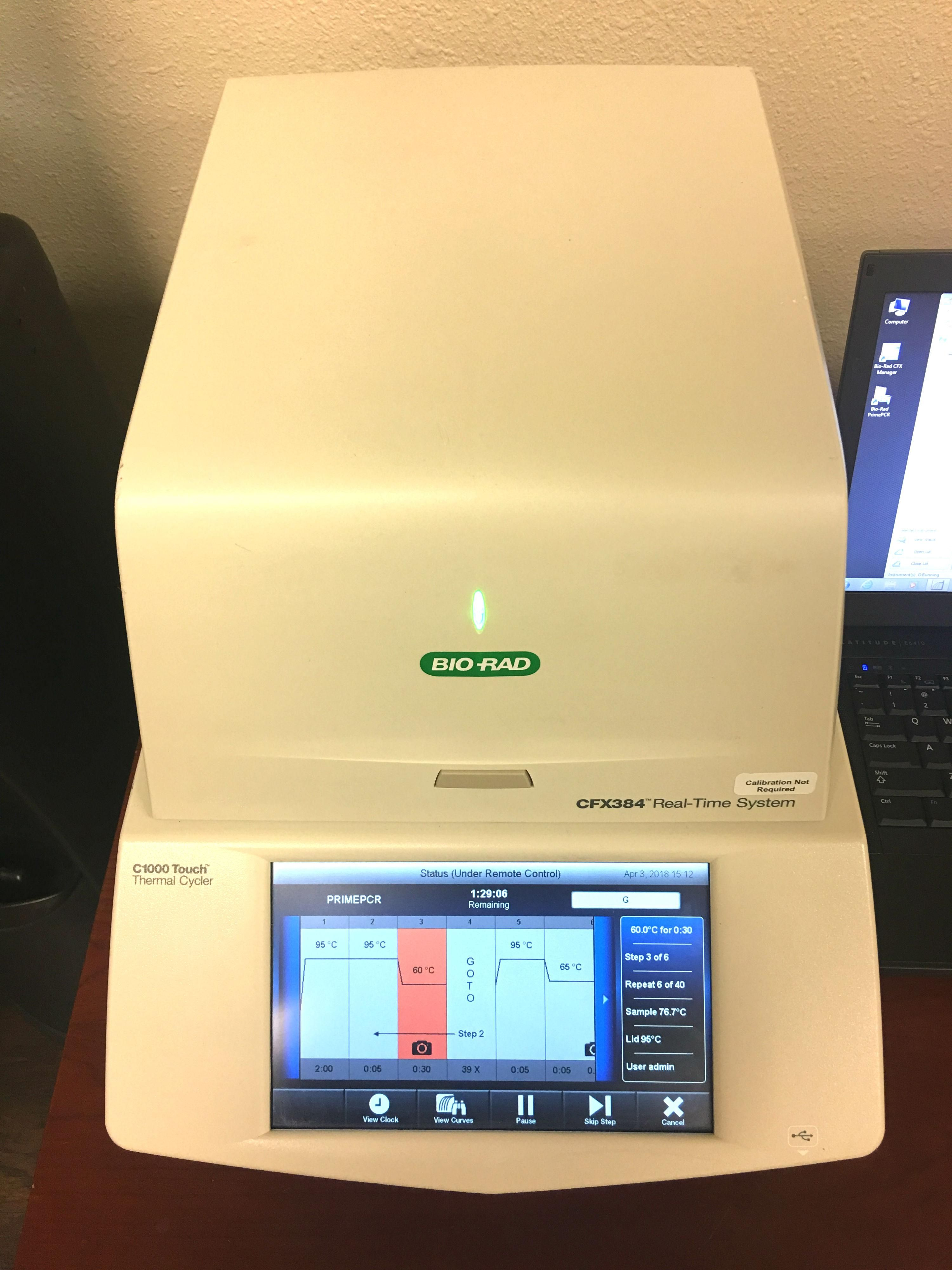 Bio-Rad CFX 384 Real Time PCR- Certified with Warranty
