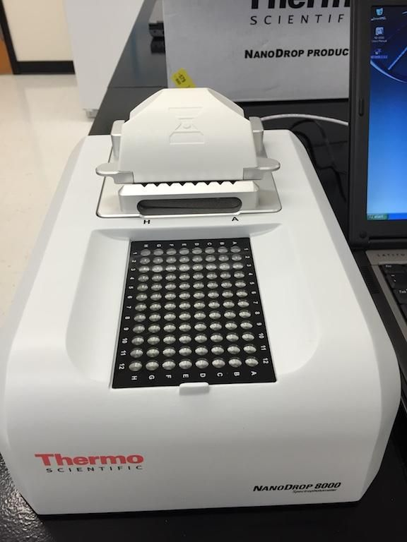 Thermo NanoDrop 8000 Spectrophotometer-Year 2014