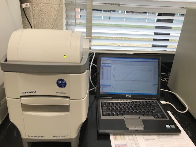 Eppendorf RealPlex2 96 well Silber Block Real-time PCR Complete System