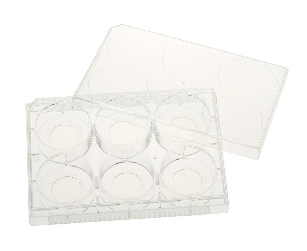 CELLTREAT Plates - Multiple Well Plates, Glass Bottom (Tissue Culture