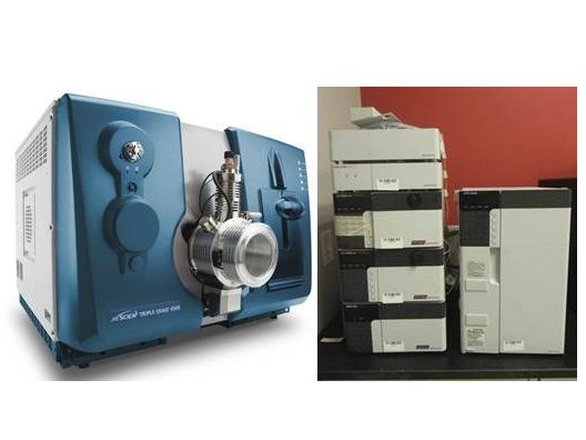 AB Sciex API 4500 LC/MS/MS W/ Shimadzu Prominence LC-20AD UFLC System