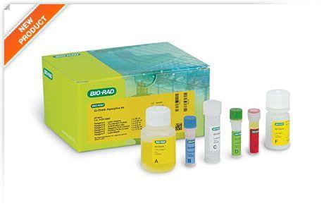 Bio-Rad Launches iQ-Check Aspergillus Real-Time PCR Kit, a Fast PCR Alternative for Aspergillus Detection