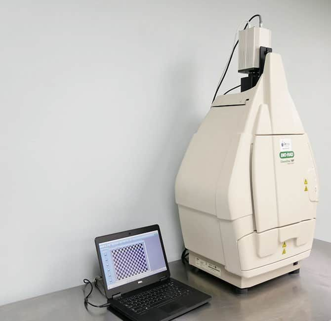 BioRad ChemiDoc MP Imaging System with Warranty