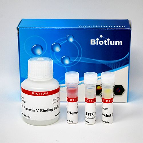 Apoptotic, Necrotic, and Healthy Cells Quantification Kit
