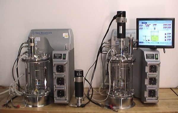New Brunswick Bioflo 310 Fermentor Bioreactor