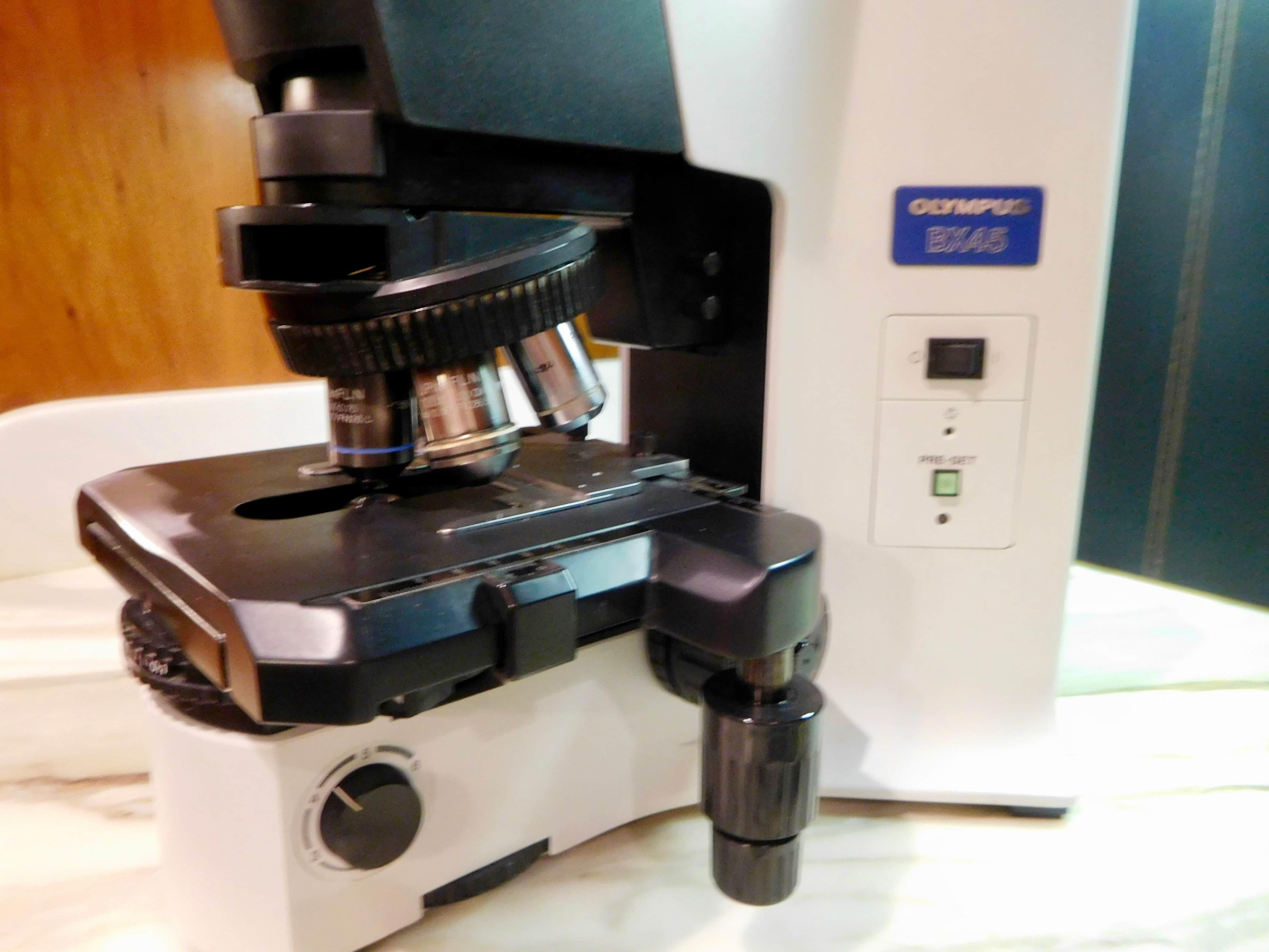 Olympus BX45 Microscope