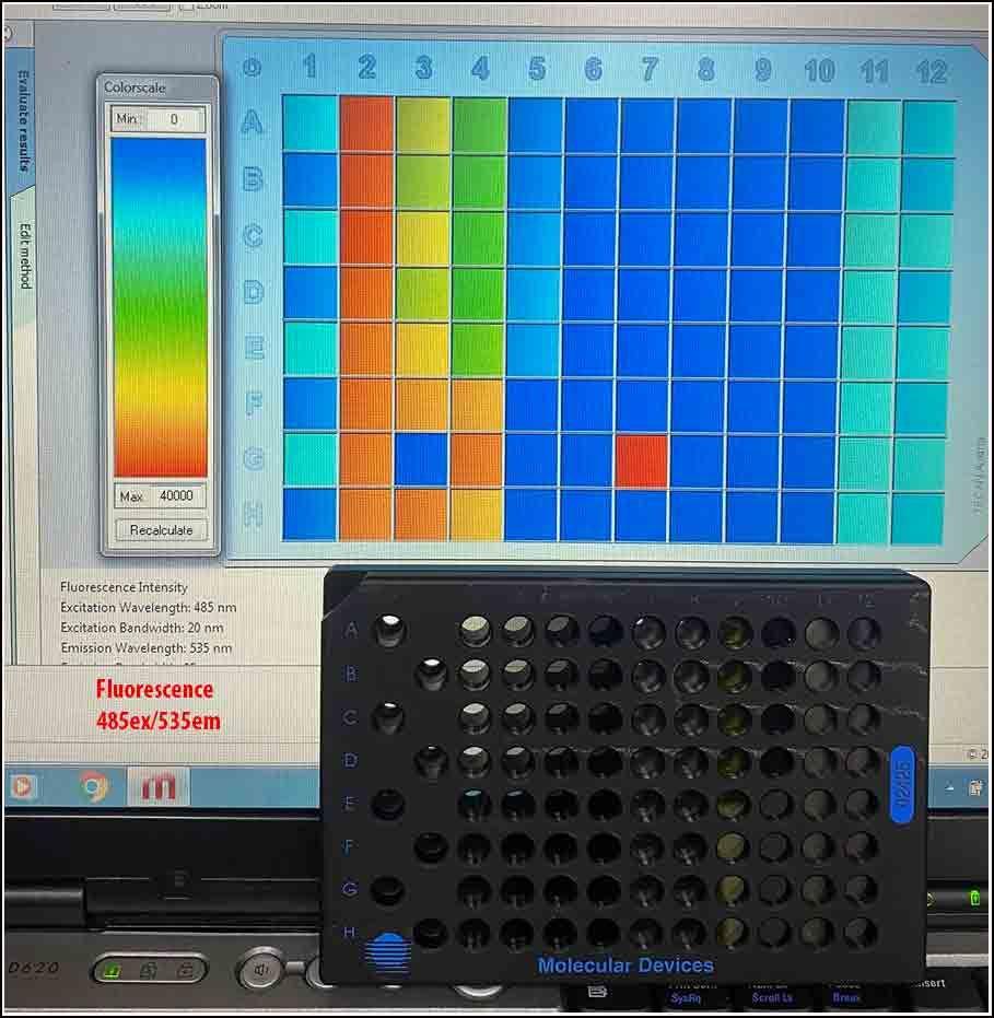 Tecan Infinite F200 MultiMode Reader FL & Ab w WARRANTY