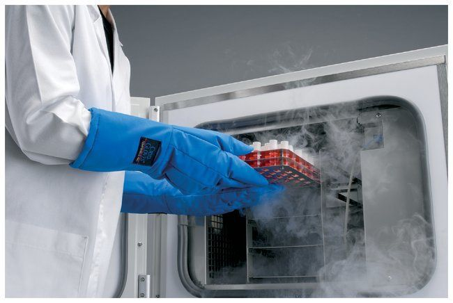 Thermo Scientific™ CryoMed™ Controlled-Rate Freezers