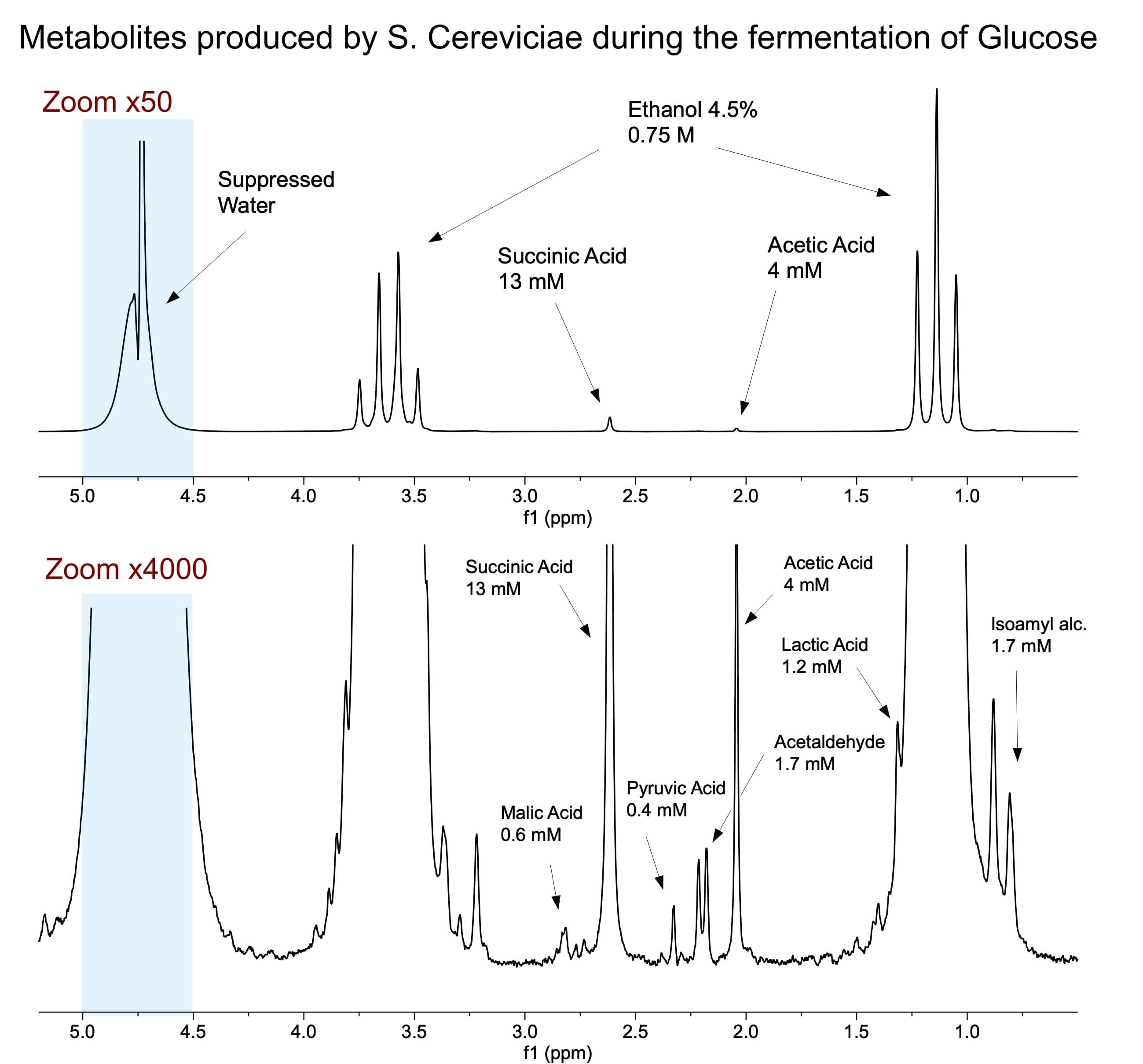 Spinsolve 80 Carbon ULTRA benchtop NMR
