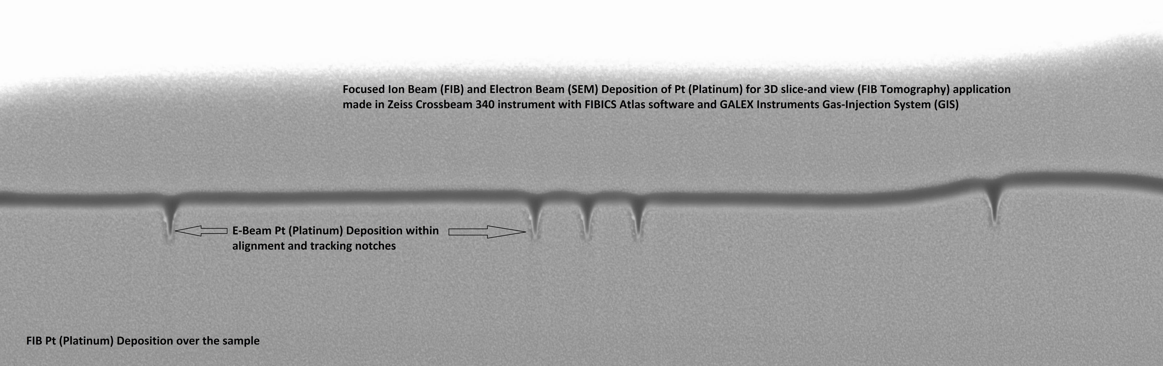 Gas-Injection System (GIS) for delivery deposition precursors in Focused Ion Beam (FIB) and dual-beam FIB/SEM